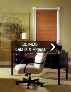 blinds-234x300